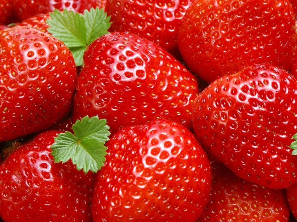 Menanam Strawberi