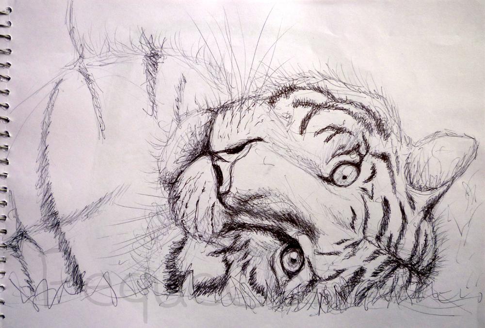 El Rincn de PequeCol: Dibujos a Boli Bic (I)