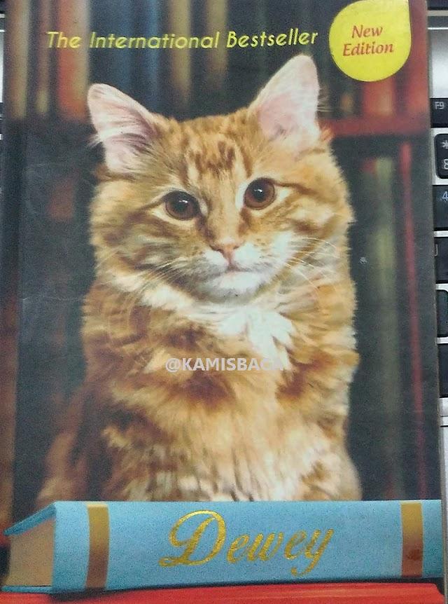 Review Buku Dewey: Kucing Perpustakaan Kota Kecil yang Bikin Dunia Jatuh Hati