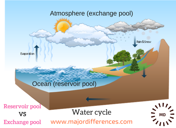 Differences between Reservoir Pool and Exchange Pool with examples