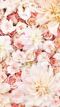 fondo celular con flores rosas