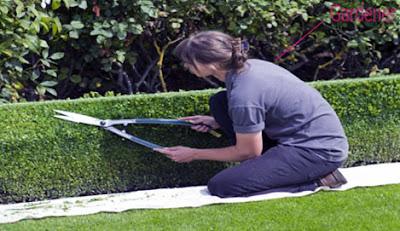 gardener occupation