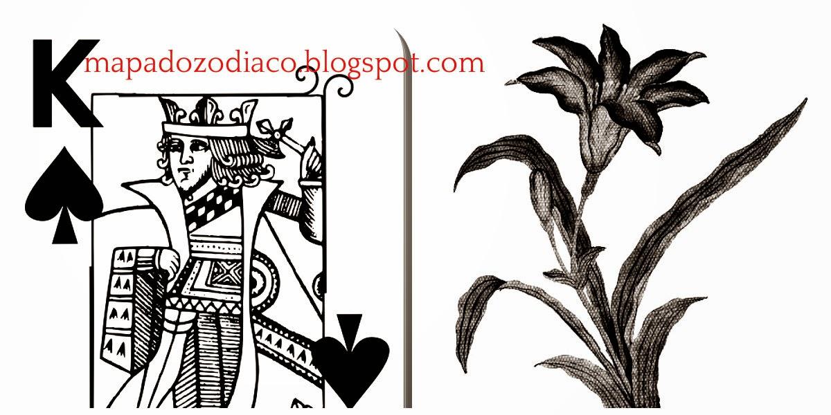 significado carta cigana lenormand lirios rei de espadas