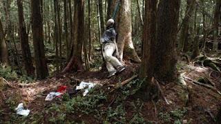 Hutan Angker Tempat Pelarian Orang Stres Lalu Bunuh Diri