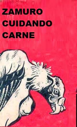 Resultado de imagen para ZAMURO CUIDANDO CARNE