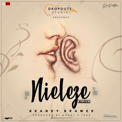 Download Mp3 | Brandy Bramer - Nieleze cover