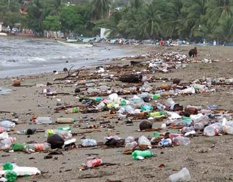 Resultado de imagen para contaminacion de basura en acapulco