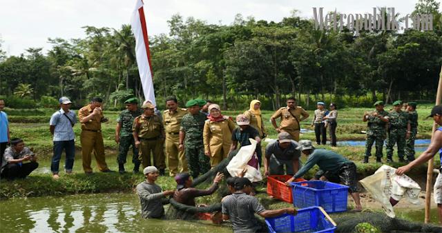 Panen Ikan Lele, Bupati Lamtim Harap Kecamatan Lain Bisa Menyusul