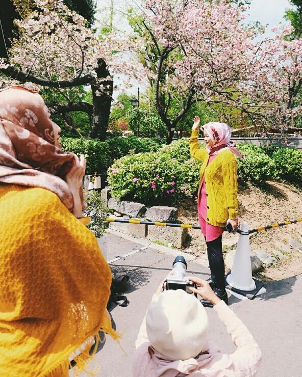 mencari sakura bulan april di jepang