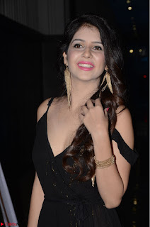 Kashish Vohra at Rogue Movie Audio Launch ~  (12).JPG
