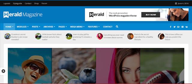 Herald- Professional Wordpress theme for news and Magazine site