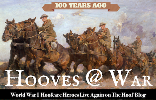 Hooves@War graphic