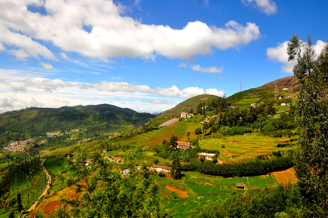 5 Hill Stations in South India that Will Leave You Breathless