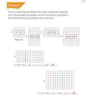 Respuestas Apoyo Primaria Desafíos Matemáticos 4to. Grado Bloque III Lección 54 Cuadrículas grandes y pequeñas