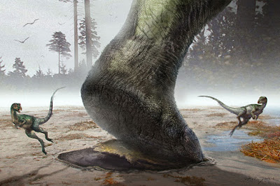 Sauropod swimmers or walkers?