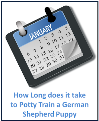 how long does it take to potty train a german shepherd puppy