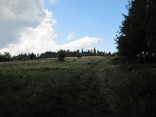 Polana Trześniowy Groń.
