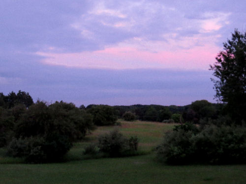 sunset colors over lawn
