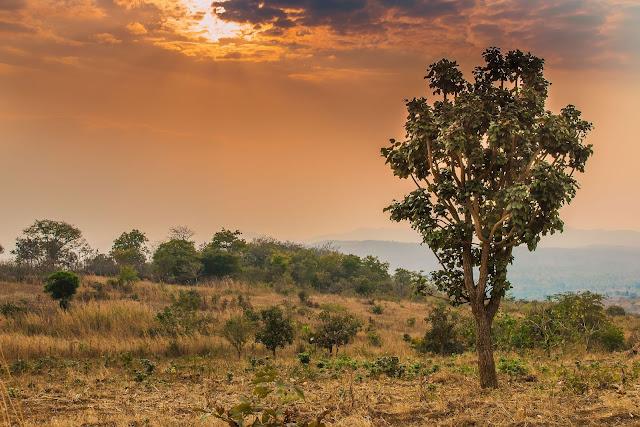 sunset malawi africa lilongwe roadtrip