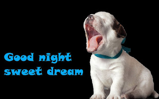 Good Night Sweet wallpaper with Cute Puppy