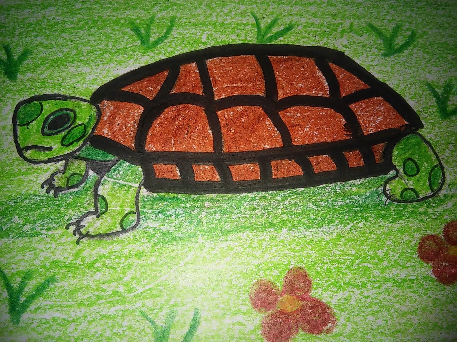 çizim Zamanı Drawing Time Renkli Kaplumbağa çizimi Drawing