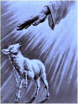 En la imagen la mano de Dios irraciando sobre una oveja.
