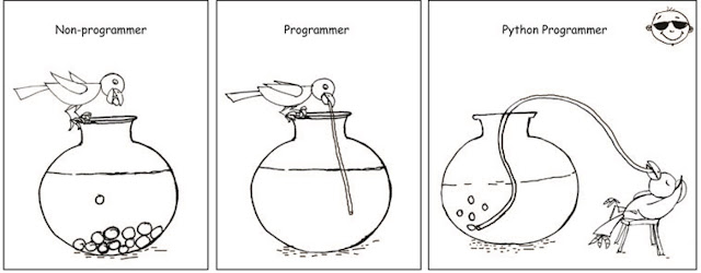 why every programmer should learn python