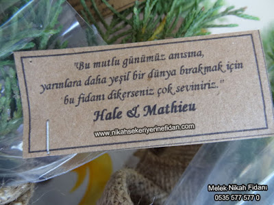 Hale ve Mathiue nikah fidani İstanbul 2