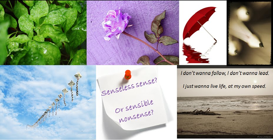 Senseless Sense?Or sensible nonsense?: The rape of the whore