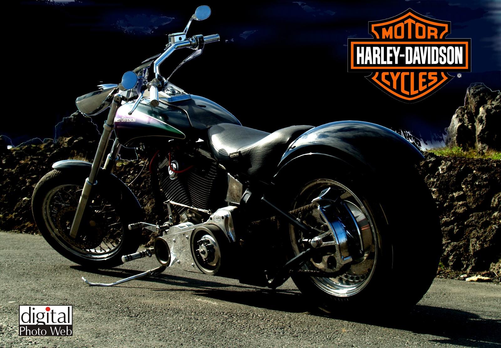 Motor Sports Hd Wallpaper: Gambar Gambar Motor Harley Davidson