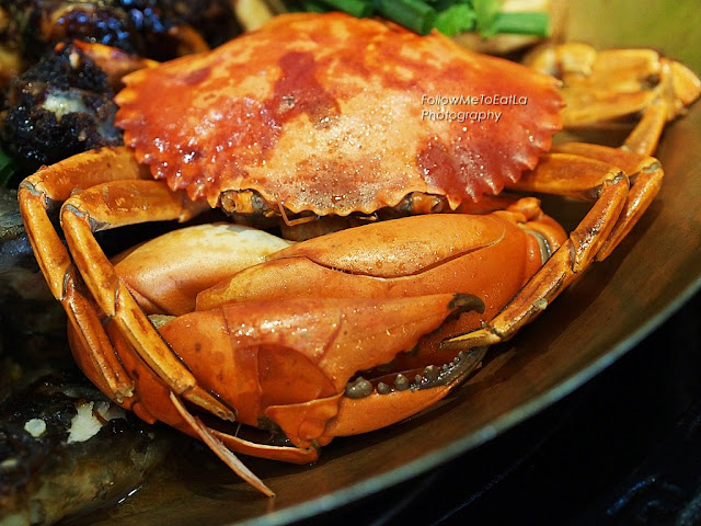Whooping Tasty Mud Meat Crab