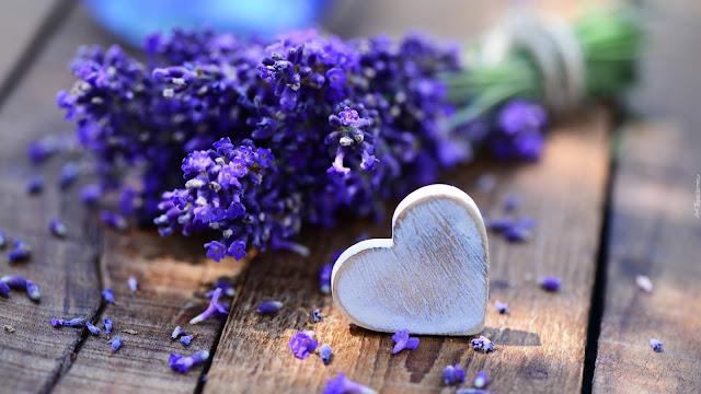 Olejek lawendowy: Uroda i zdrowie