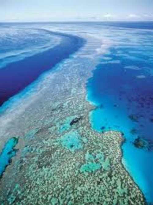 Amazing Pics Amazing Great Barrier Reef Wallpapers