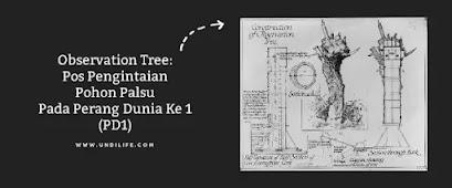 Observation Tree WW1