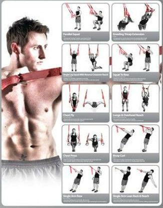 Trx Exercises Chart