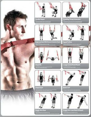 TRX exercises chart
