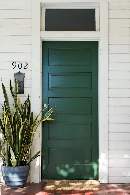 Green Front Doors and Sansevieria
