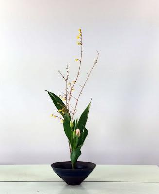 生け花:【生花正風体】レンギョウ、ハラン、チューリップ