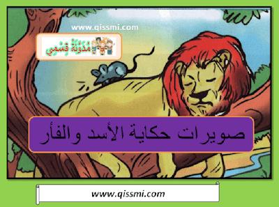 صويرات حكاية الأسد و الفأر