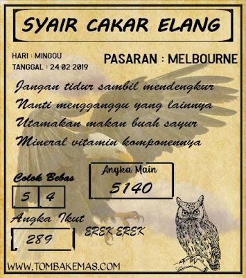 SYAIR MELBOURNE,24-02-2019