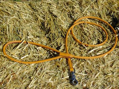 Guinzaglio in cuoio tubolare chiaro con moschettone in acciaio inox, interamente cucito a mano, lunghezza 1.5 m