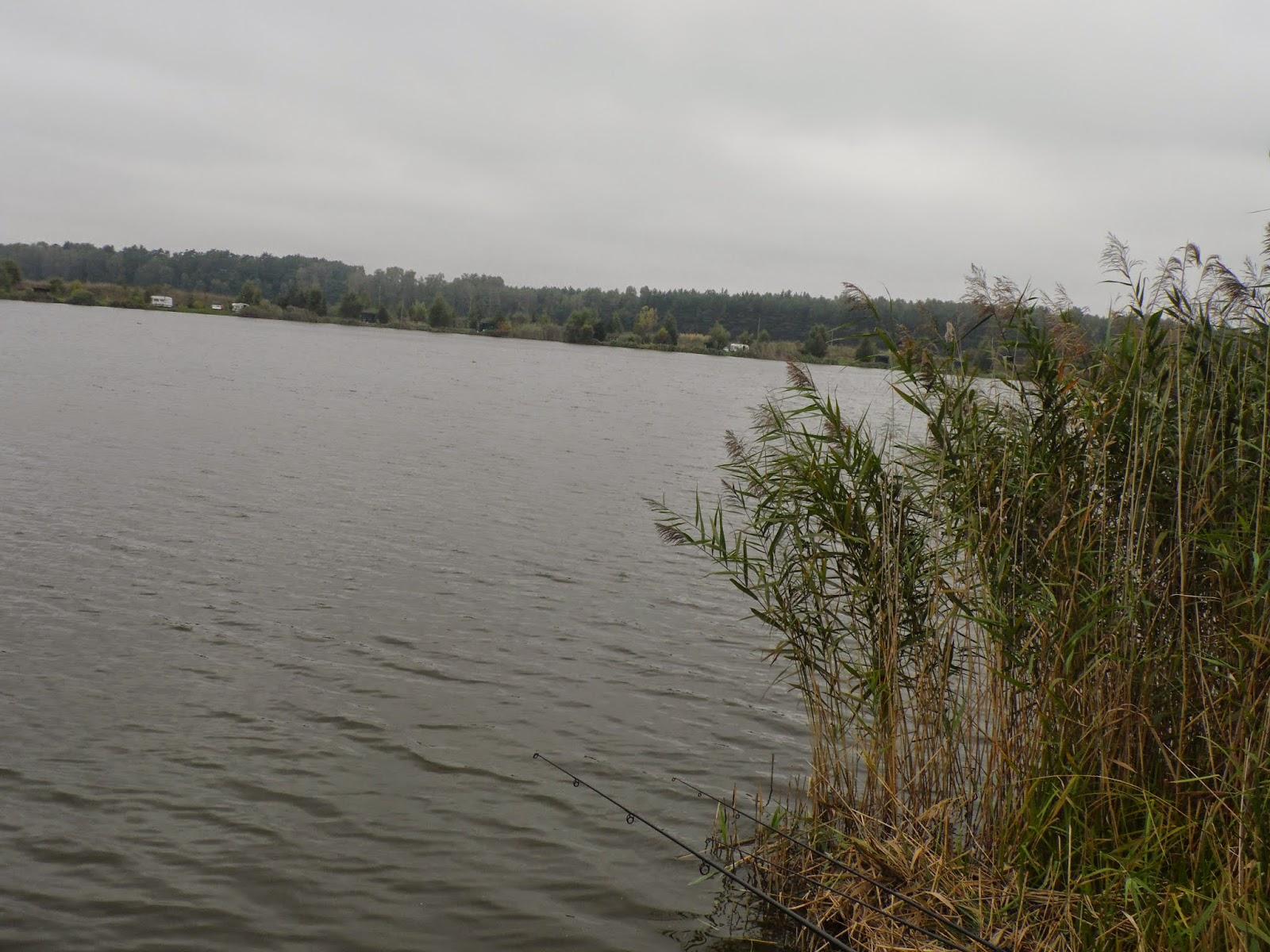 http://carpfishing98.blogspot.com/2014/09/wrzesniowa-zasiadka-na-jarosawkach-12.html