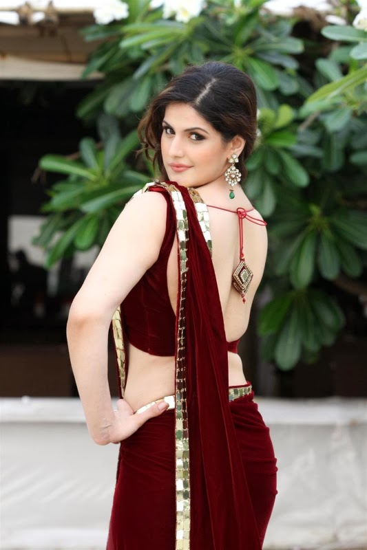 Zarine Khan hot wallpapers