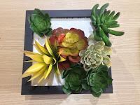 diy plantas artificiais emolduradas
