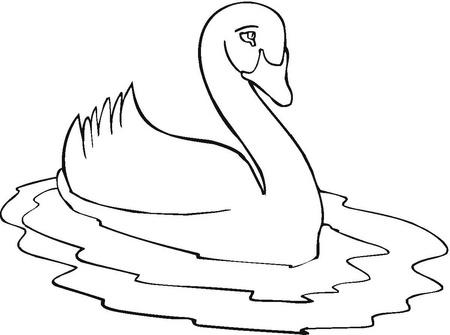 Dibujos para imprimir y colorear: Cisne para colorear