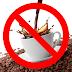 Porquê eu não tomo Café!?!