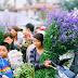 List Tet markets to visit in around Hanoi don't miss