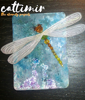 52 cafe cards Dragonfly