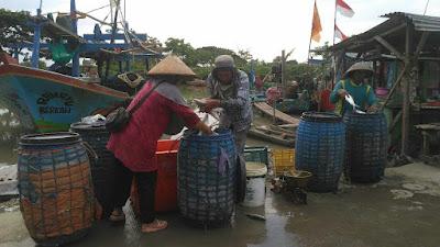 tempat pelelangan ikan tempat pelelangan ikan di cirebon tempat pelelangan ikan cirebon tempat pelelangan ikan di karawang tempat pelelangan ikan di pangandaran tempat pelelangan ikan karawang tempat pelelangan ikan indramayu tempat pelelangan ikan di pelabuhan ratu tempat pelelangan ikan terbesar di indonesia tempat pelelangan ikan di indramayu tempat pelelangan ikan di ujung genteng tempat pelelangan ikan terdekat tempat pelelangan ikan muara angke tempat pelelangan ikan di jakarta tempat pelelangan ikan di lampung tempat pelelangan ikan di bekasi tempat pelelangan ikan disebut tempat pelelangan ikan pdf tempat pelelangan ikan semarang tempat pelelangan ikan di kebumen tempat pelelangan ikan pacitan tempat pelelangan ikan adalah tempat pelelangan ikan anyer tempat pelelangan ikan asin tempat pelelangan ikan artinya tempat pelelangan ikan di anyer tempat pelelangan ikan muara angke jakarta pengertian tempat pelelangan ikan adalah tempat pelelangan ikan di aceh tempat pelelangan ikan menurut para ahli peran nelayan di tempat pelelangan ikan adalah sebagai alamat tempat pelelangan ikan di jepara alamat tempat pelelangan ikan di cirebon alamat tempat pelelangan ikan semarang aturan tempat pelelangan ikan alamat tempat pelelangan ikan di semarang tempat pelelangan ikan terbesar di indonesia adalah alamat tempat pelelangan ikan muara angke arti tempat pelelangan ikan alamat tempat pelelangan ikan sidoarjo tempat pelelangan ikan bali tempat pelelangan ikan batang tempat pelelangan ikan belawan tempat pelelangan ikan bandar lampung tempat pelelangan ikan balikpapan tempat pelelangan ikan banten tempat pelelangan ikan banyak terdapat didaerah tempat pelelangan ikan batam tempat pelelangan ikan bekasi tempat pelelangan ikan blanakan tempat pelelangan ikan banjarmasin tempat pelelangan ikan banyuwangi tempat pelelangan ikan bitung tempat pelelangan ikan blitar tempat pelelangan ikan bangil tempat pelelangan ikan brebes tempat pelelangan ikan bojong salawe pangandaran west ja