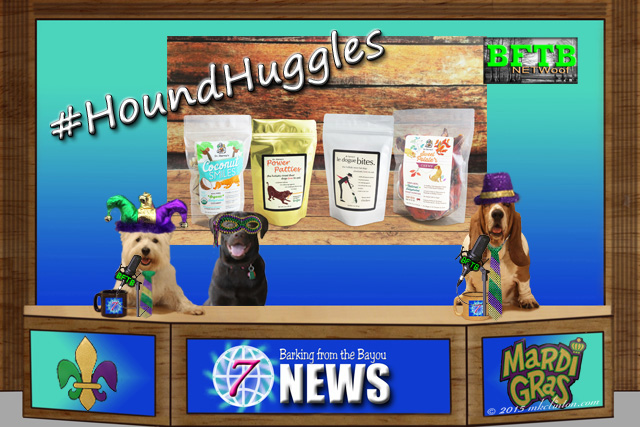 BFTB NETWoof News desk with 3 dogs and Dr. Harvey's treats on back screen.